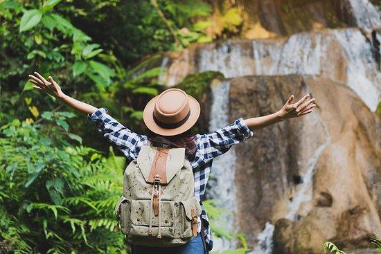 バリ島-自然-ライステラス-滝-コーヒーと寺院ツアー