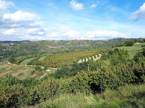 Azienda Agricola Ra Nissora