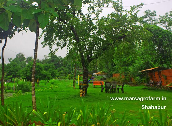 Wonderful Farmhouse For Family Picnic Near Mumbai Review Of Mars Agro Farm Kharivali Tripadvisor