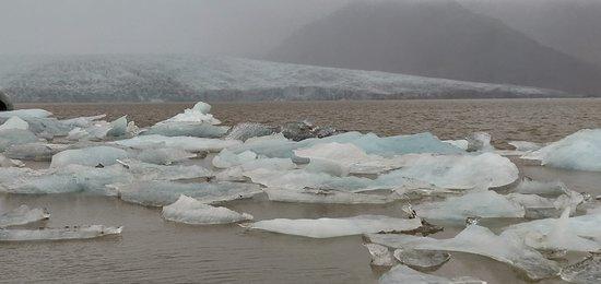 Fjallsárlón Iceberg Lagoon
