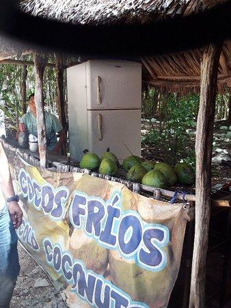 Mexico 2019 Cenote Suytun was amazing!