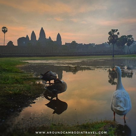 Available daily tour and avoid crowded itinerary to make sure your holiday in Siem Reap is complete with lots of good memories.   For more information: www.aroundcambodiatravel.com  WhatsApp for booking your tour: +85569922277 (fast and easy)  In Cambodia call us for appointment to tailor made your tour: 069922277   Our service:  *Day trip arrangements *Temples day tours  *Inbound around Cambodia travel *Outbound tour to and from Laos, *Thailand, Vietnam, Malaysia, *Singapore, Bali, Philippines.