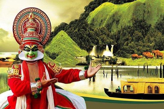 9天私人异国风情喀拉拉邦之旅