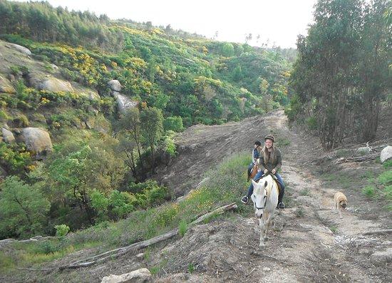Midões, Portugal: Horse riding Holidays Portugal