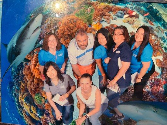 SEA LIFE Orlando Aquarium - 2019 All You Need to Know ...