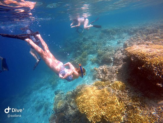 North - West Bali Adventures Activities