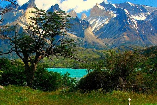 PatagoniaMW