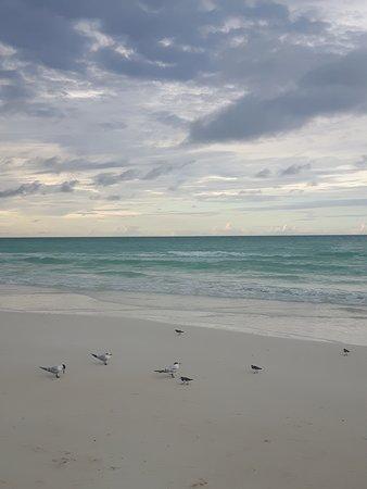 Beach - Grand Memories Santa Maria Photo