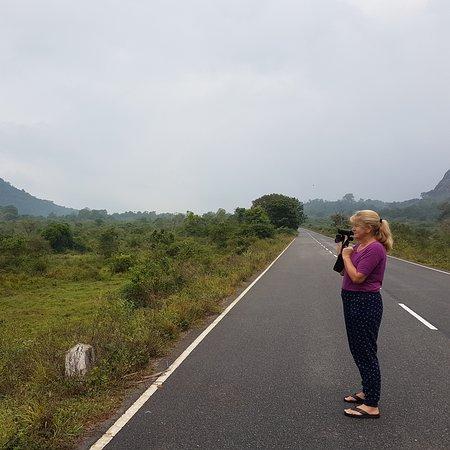 Aralaganwila, ศรีลังกา: Madurai oya tank