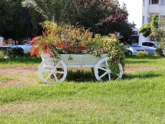Trikomo, Kypros: Caesar Resort
