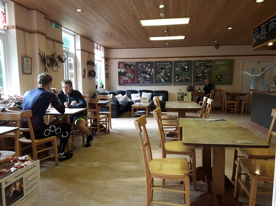 East Meon, UK: The cafe
