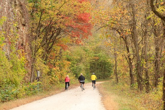 New Franklin, MO: KATY Trail fall leaves along 177 mile marker
