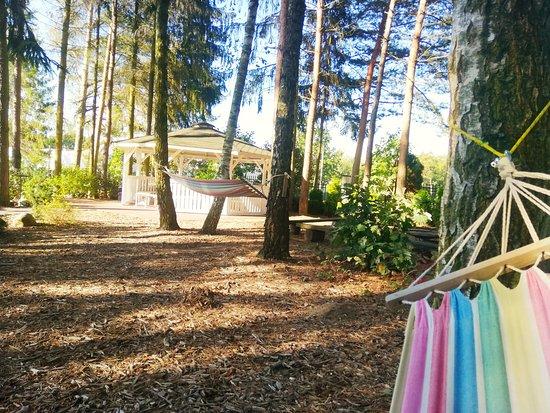 Radziejowice, Lengyelország: hamaki i ogród!