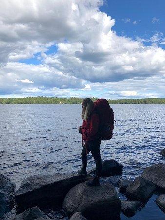Liesjarvi, Finland: Wild camping near the lake Liesjärvi, in Liesjärvi national park.
