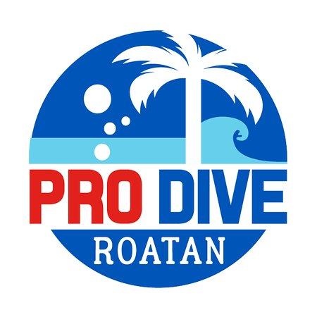 Pro Dive Roatan