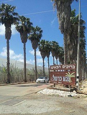 Ein Hod, Israel: גבע כרמל ישוב קרוב לעין הוד , בתמונה כניסה לישוב גבע כרמל יציאה מכביש 4  בכיכר הישוב פנו שמאלה למשפחת  אליאן וחיים לוי דרך האורן 44