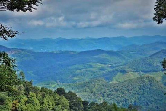 Yatiyantota, Sri Lanka: Beautiful srilanka .this place cal weweltalawa .middle of country.beautiful tea gardans and mountain very green.