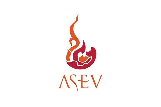 ASEV Travel