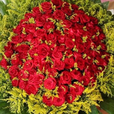 Send Flowers To Your Beloved Ones. Online Gifts and Cakes. Sharm Flowers Flower Shop Sharm El Sheikh - Quality Service, Best Prices. Order Today! sharmflower.com facebook.com/sharmflower/