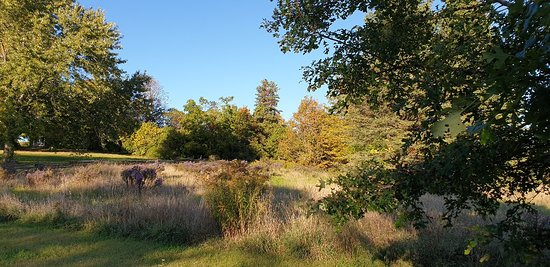 Proctor Park Conservation Area