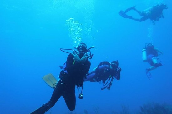 Artesano Diving