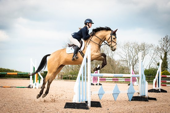 Richmond, UK: Show Jumping in the Yorkshire Arena