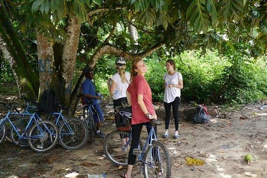 Bluebikes Zanzibar