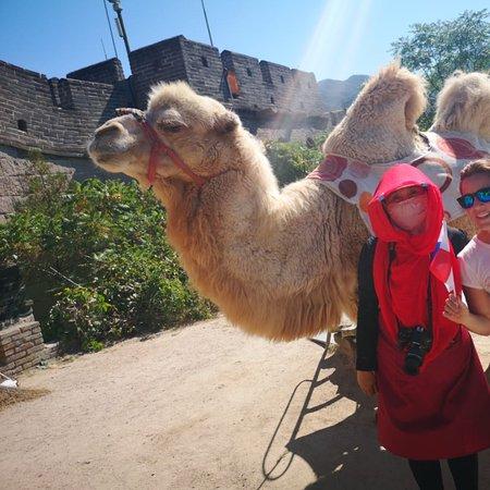 Gran Muralla China Esta vez durante Mi visita a China, volví a subirla pero desde otro lado Badaling... en pleno inicio de otoño el clima estaba caliente, y de verdad, este lado me costó más, pero el haber visto, montado y retratado con el camello no tenía precio