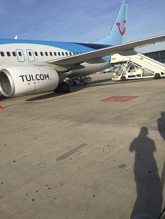 TUI fly Belgium (formerly Jetairfly) - ジェットエアフライの写真 ...