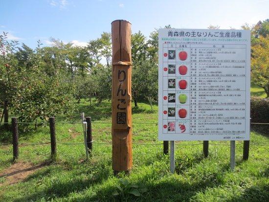 Tsugaru Service Area Outbound