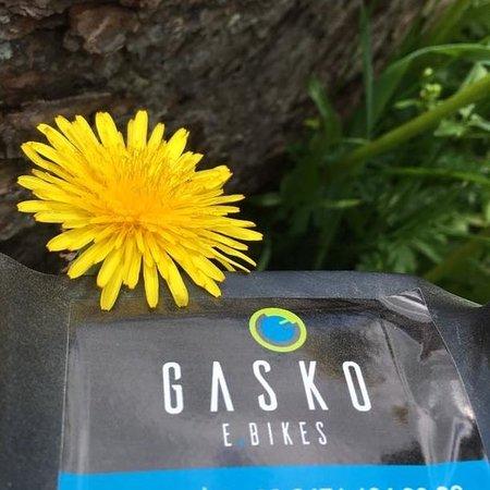 GASKO E-Bikes