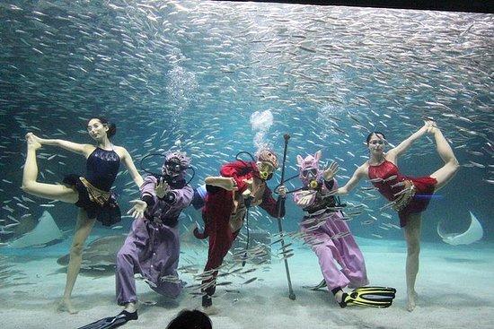 COEX Aquarium rabatterad entrébiljett