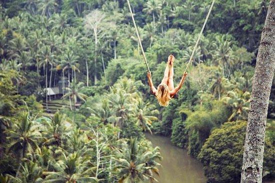 トゥグヌンガン滝のあるジャングルスイングウブドツアー