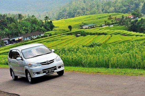 Alquiler de coches PRIVADO en Bali con...