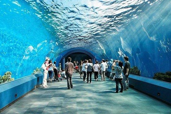 Underwater World at Pattaya Biglietto