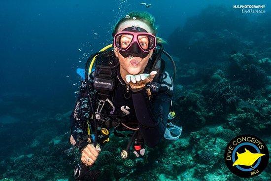 5 Fun Dives in Pemuteran (for certified divers) - Exploration in Menjangan Park: 5 Fun Dives in Pemuteran (for certified divers) - Exploration in Menjangan Park