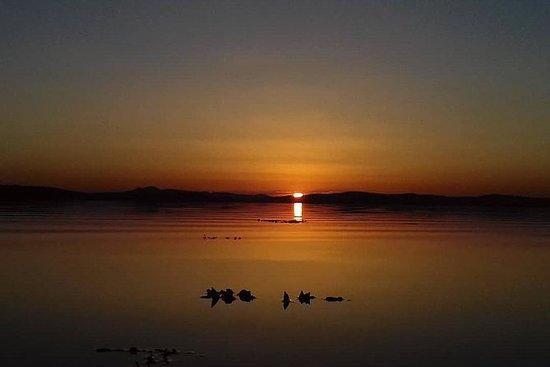 夜皮划艇穆罗伊湾