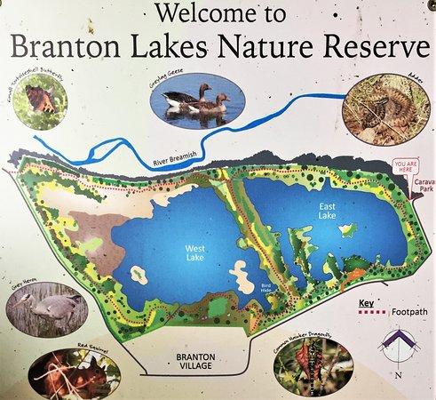 Branton Lakes Nature Reserve