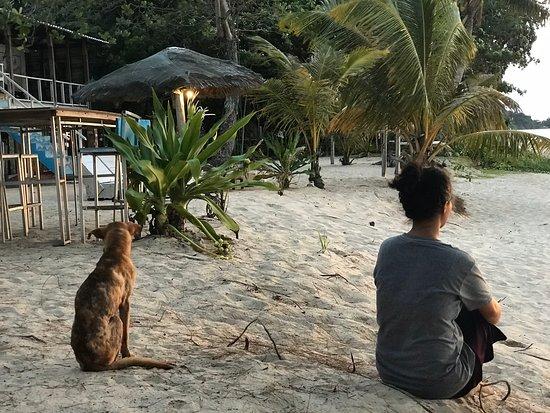 Kuala Penyu, Malaysia: * * 🤜🏻🤛🏻 You never walk alone 🤪 * * ~ Admiring beautiful sunset ~ @nagapuribeachretreat . .. ... .... ..... ...... #travel #traveler #traveller #traveling #travelling #travelphotographer #happyholidays #travelgram #sunset #beach #accommodation #barbecue #foodporn #seafood #kualapenyu #visitkualapenyu #sabah #sabahtourism #visitsabah #malaysia #visitmalaysia #guestsloveusbookingcom #hotelier #korea #japan #taiwan #foodporn #sunset #tgis #gardening