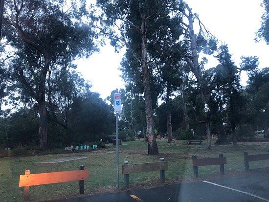 Heywood Park