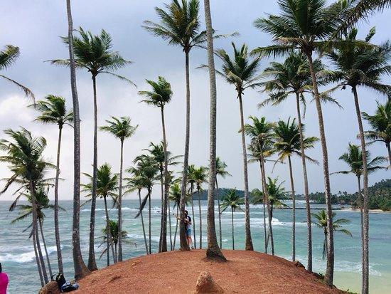 Coconut Tree Hill_Mirissa