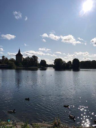 Pildammsparken , Malmös lunga