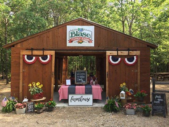 Blase Family Farm
