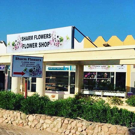 Sharm Flowers Flower Shop.Everyday Floral Arrangements, Online Flower Delivery and Florist Services. sharmflower.com  * Online Flower Delivery * Weddings, Birthdays and Events Decoration  * Exotic Arrangements * Contract Flowers * Corporate Occasions * Cakes, Gifts, Plants, Gift Cards, etc.