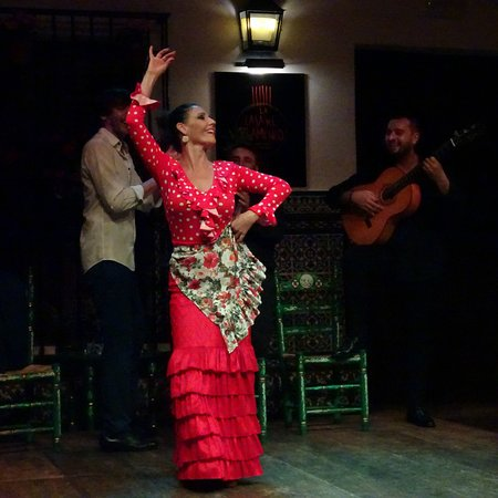 Sevilla, Španělsko: Fantastic show - you can take photos at the end when they allow it