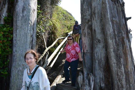 The really steep steps.