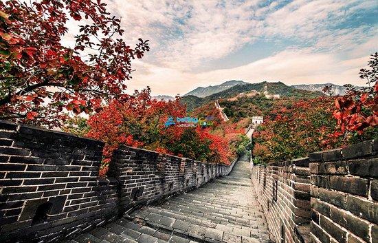 One-Day Mutianyu Great Wall Hiking Tour (no shopping)