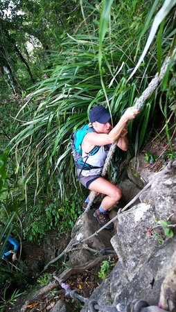 """""""There is probably no pleasure equal to the pleasure of climbing a dangerous , but it is a pleasure which is confined strictly to people"""