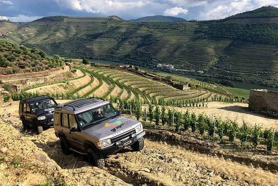 Grapeland Adventure and Tourism