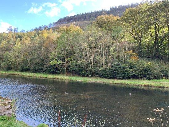 Bilde fra Cwmcarn